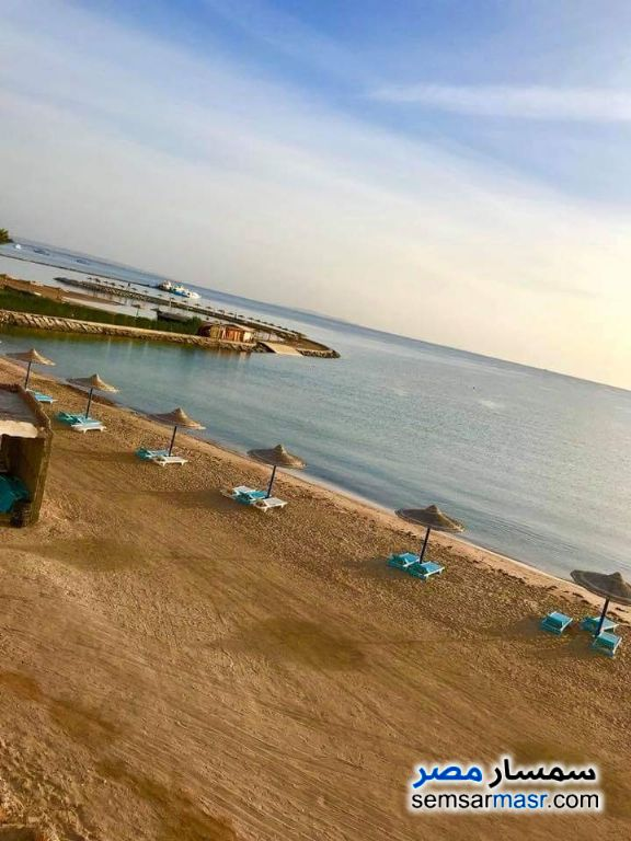 Photo 1 - Daily rent in Cecilia resort short term only For Rent Hurghada Red Sea