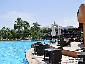 Harry up to reserve for midterm vacation in Delta Sharm Resort For Rent Sharm Al Sheikh North Sinai - 6