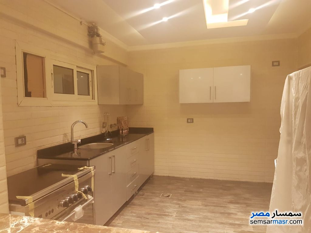 Photo 7 - In Dokki apartment 350m modern furniture for rent For Rent Dokki Giza