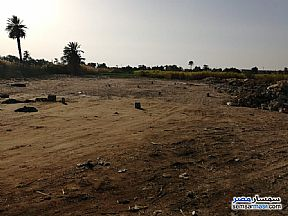 Ad Photo: Land 4200 sqm in Daraw  Aswan