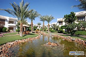 Ad Photo: Apartment 4 bedrooms 1 bath 125 sqm extra super lux in Sharm Al Sheikh  North Sinai