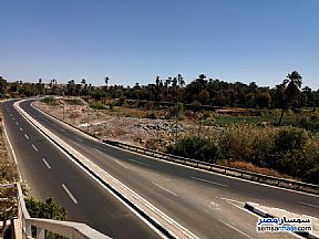 Ad Photo: Land 17600 sqm in Aswan City  Aswan