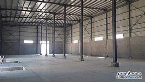 Ad Photo: Commercial 18000 sqm in Borg Al Arab  Alexandira