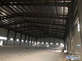 Ad Photo: Commercial 8065 sqm in 10th Of Ramadan  Sharqia